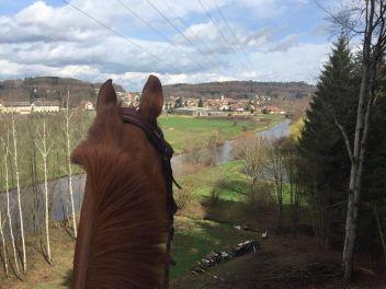 Ecuries du saut des Vosges