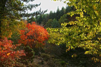 Jardins de Gondremer (otvv)