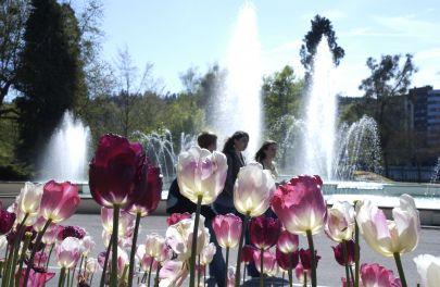 Parc du Cours - Epinal
