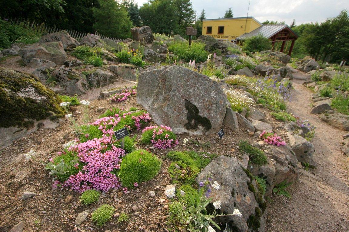 Jardin d 39 altitude du haut chitelet tourisme vosges - Jardin d altitude du haut chitelet ...