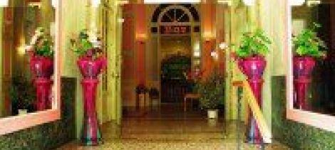 Aperçu de HOTEL RESTAURANT L'ALSACE