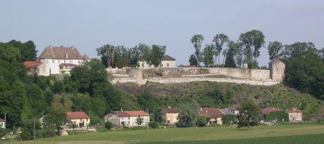 Aperçu de LE SITE CASTRAL D'HARCHECHAMP