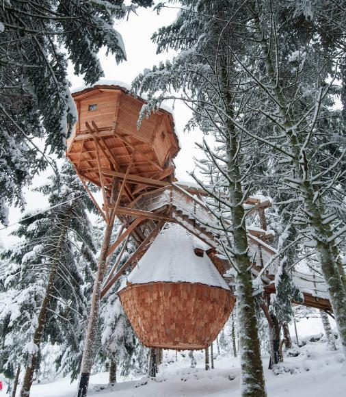 Cabane dans les arbres - La Bresse