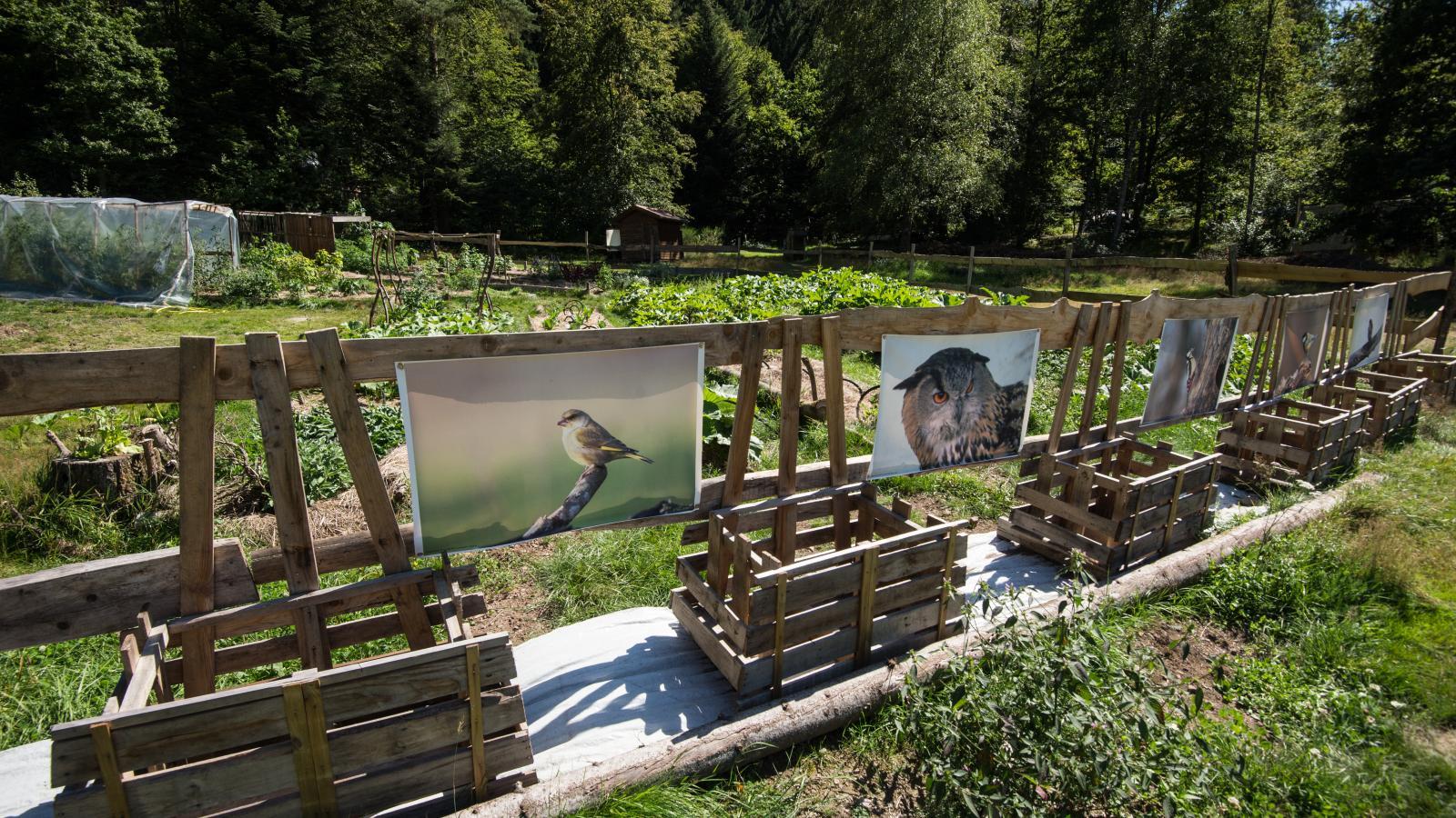 Jardins u00e9cologogiques Camping du Metey