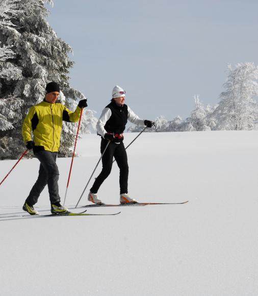 Skieurs de fond