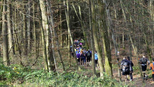 Trail 2 ©CD88-JL